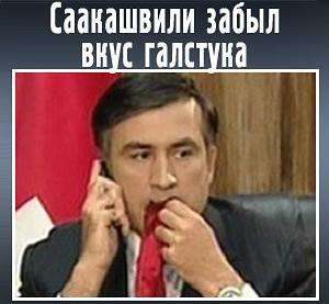 саакашвили ест галстук гифка экспертного блогерского жюри