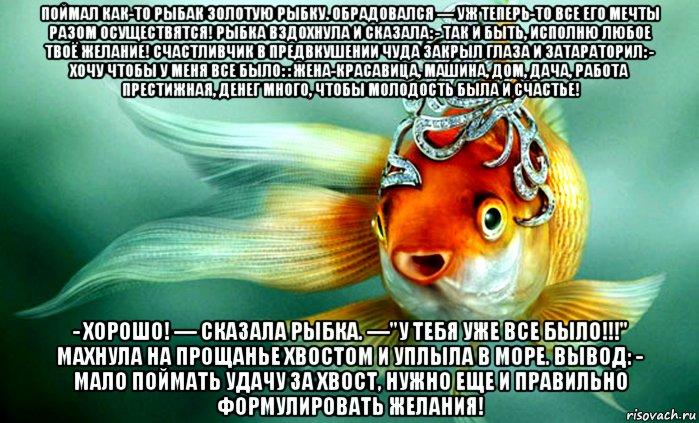 Стихи с днем рождения золотая рыбка