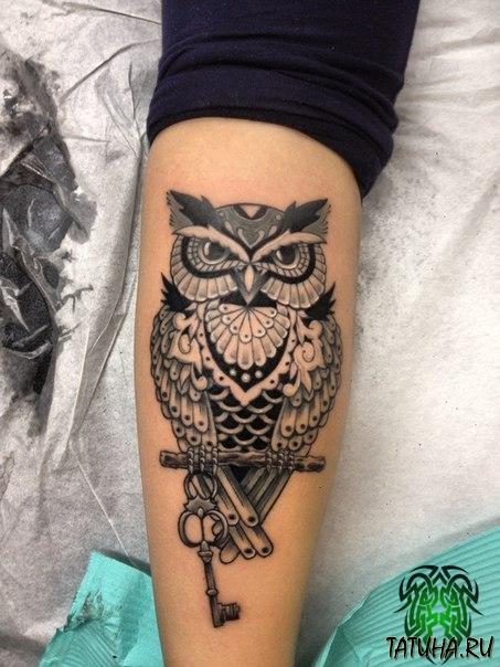 фото татуировки совы