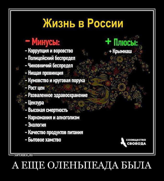 многонациональность в россии плюсы и минусы серии тайшан