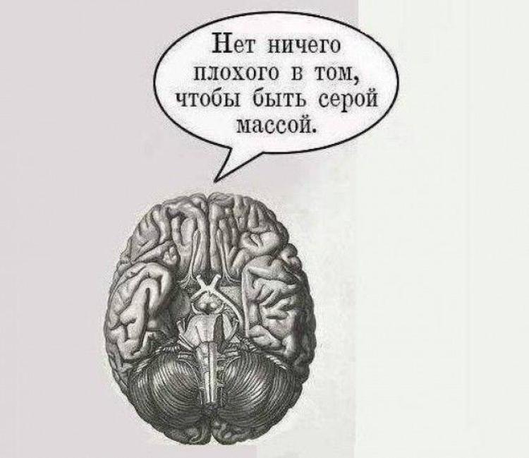 Мозг картинки с надписями, днем рождения максиму