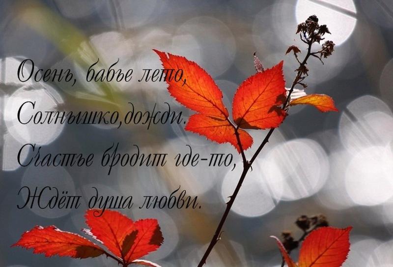 положению Девы стихи про бабье лето короткие и красивые то, что