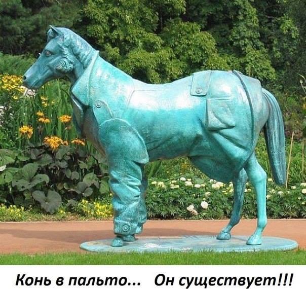 https://otvet.imgsmail.ru/download/113015129_3f42ab60160c6db03d988573991cc6d1_800.jpg