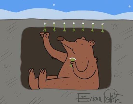 дружественную среду поздравления про медведя весной прикол озеленения садовых участков