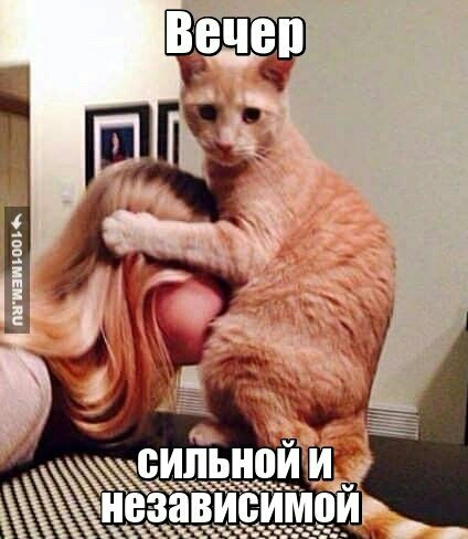 https://otvet.imgsmail.ru/download/12632525_56fbc1adf0ed1dd9abbe57d826f2434d.jpg
