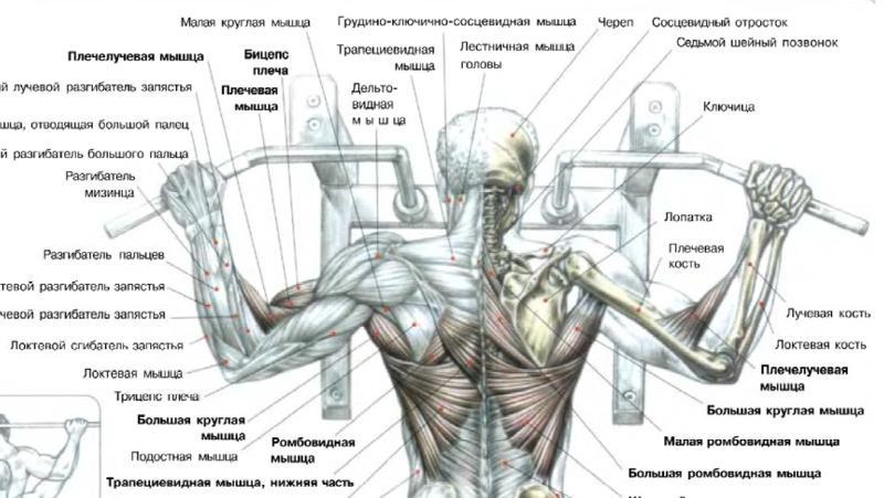 какими упражнениями убрать внутренний жир