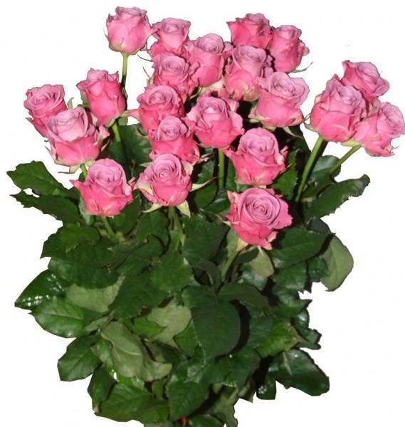 Про дружбу, для машеньки картинки цветы
