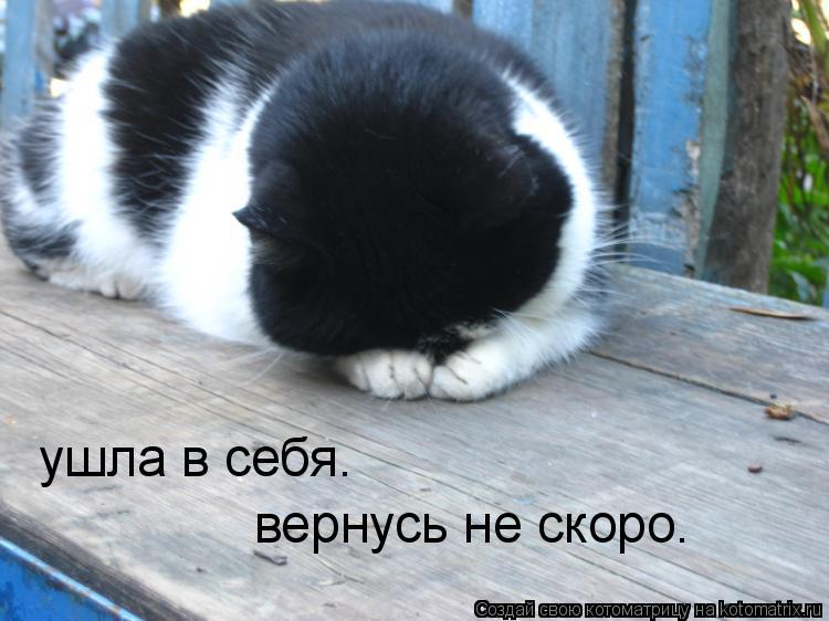 https://otvet.imgsmail.ru/download/14669600_fcf1b56d1e4fd985fddf7e5640f17d97_800.jpg