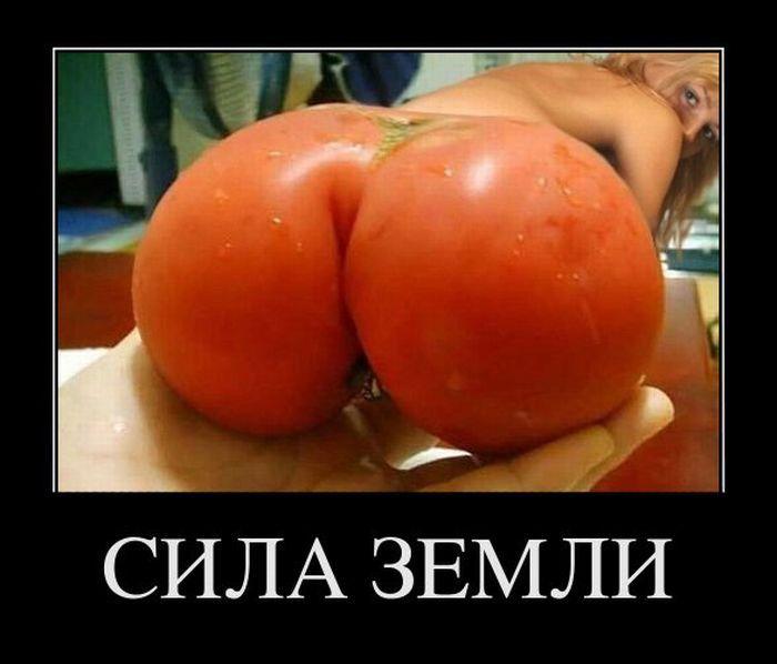 Сами помидори фото по порно