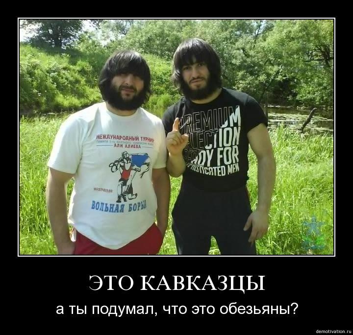 почему кавказцы такие волосатые