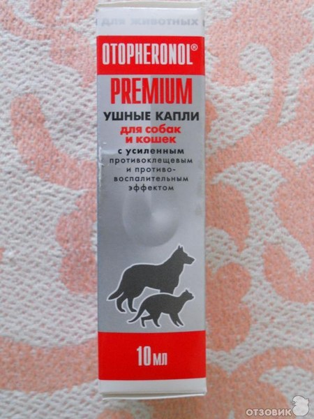 самой модной самые эффективные капли от ушного клеща для кошек Подмосковье (северо-запад)