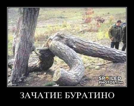 Памятник Кирову демонтировали в Одесской области - Цензор.НЕТ 8256
