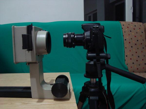 Звук приближения на фотоаппарате дала природа