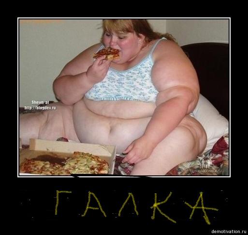 Худеет с каждым днём толстяк