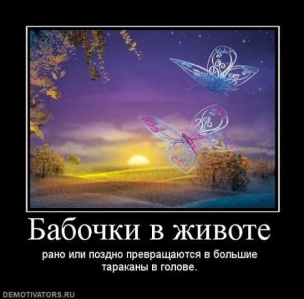 Стих где твои бабочки что летали внизу живота