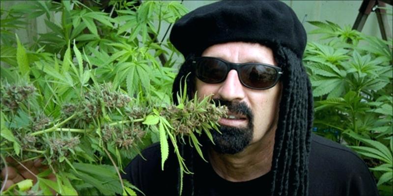 Фильм про марихуаны женская и мужская конопли