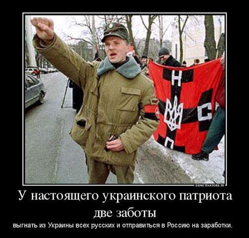 Где работают украинцы в россии