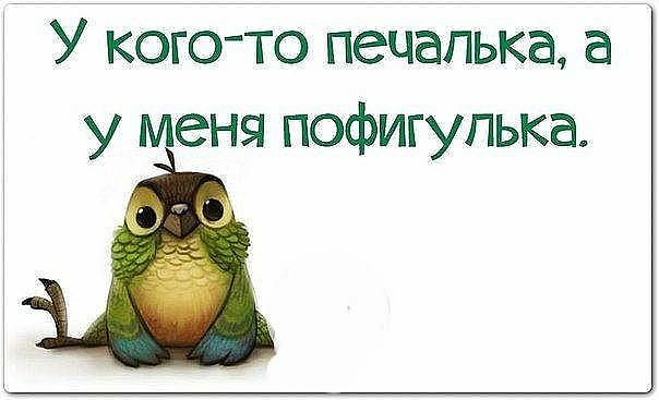 https://otvet.imgsmail.ru/download/17823050_57d03a7bd31aedf51cdfea990bf1799a_800.jpg