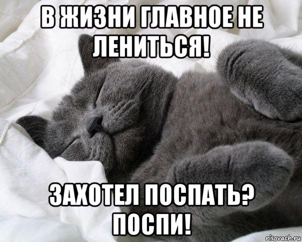 Я хочу с тобой спать картинки прикольные