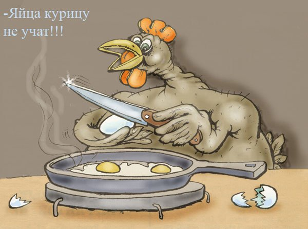 Картинки яйца учат курицу