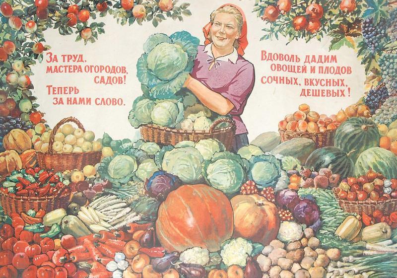 Смешные картинки про уборку урожая