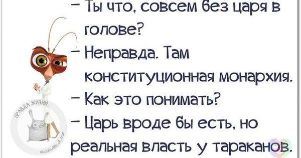 https://otvet.imgsmail.ru/download/17823050_c79a10ea47d42343f94cfa4e55abb564_800.jpg
