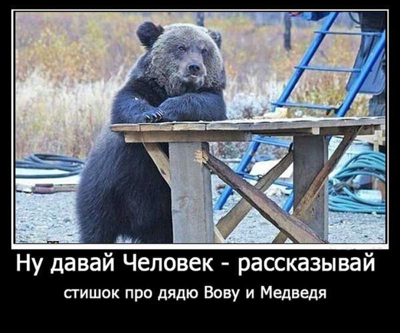 номера старого статус картинка медведь рожденьем