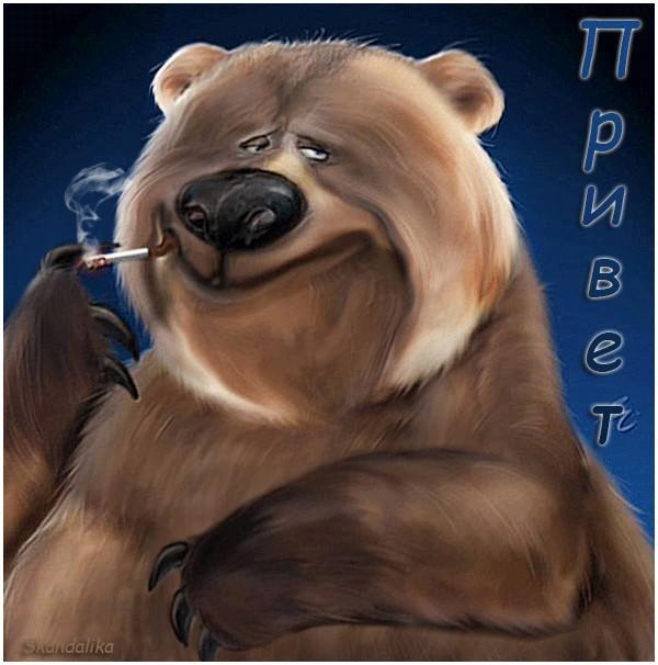 Открытки прикольные медведь