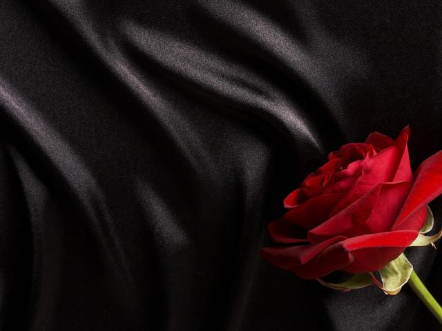на черно белом фото оставить красный цвет