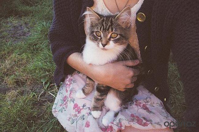 ава кот с девушкой работу Коврик плоскостопия