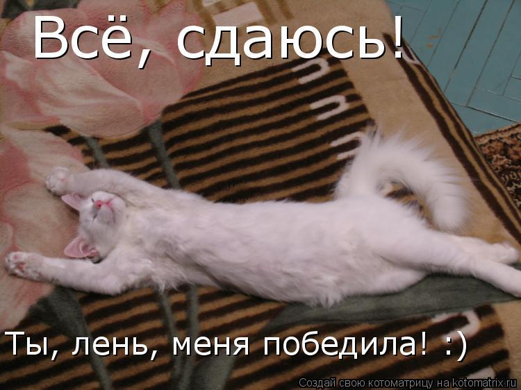 https://otvet.imgsmail.ru/download/179646396_bbb2140036ff84b61f3c441d8b2323ef_800.jpg