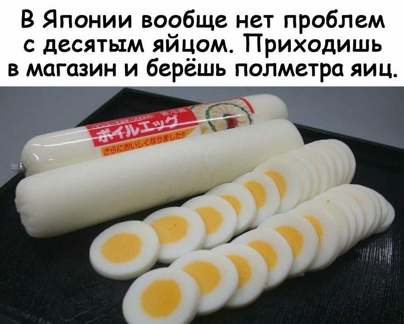 Лягушки картинки, в японии вообще нет проблем с 10 яйцом прикольные картинки