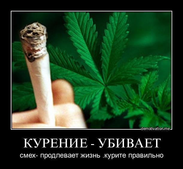 Я курила курю и буду курить коноплю самый безопасный способ курения марихуаны