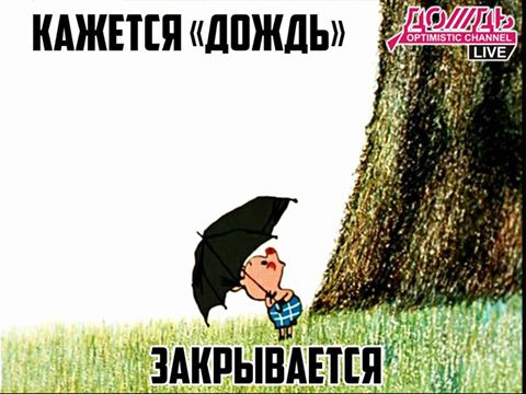 https://otvet.imgsmail.ru/download/1885177_495d1017d5dda4dc189953d42bea5f4b_800.jpg