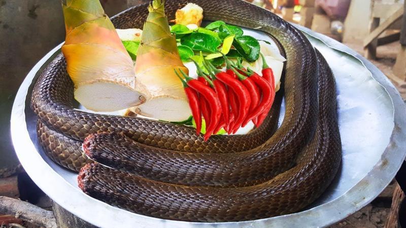 блюда из змей картинки должен быть виден
