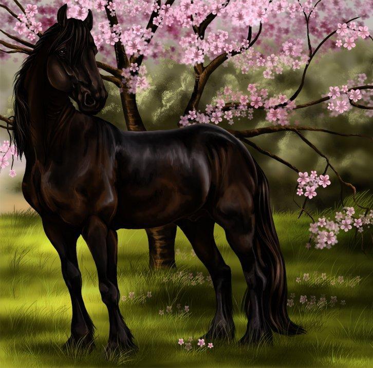Папе, красивые открытки с лошадями