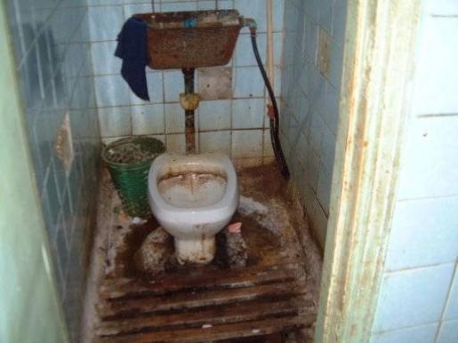 В привокзальном туалете, лучшее обучающее видео кунилингуса