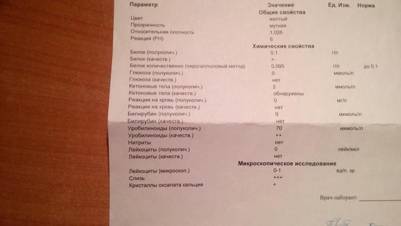 Похудение По Анализу Крови И Слюны Екатеринбург.