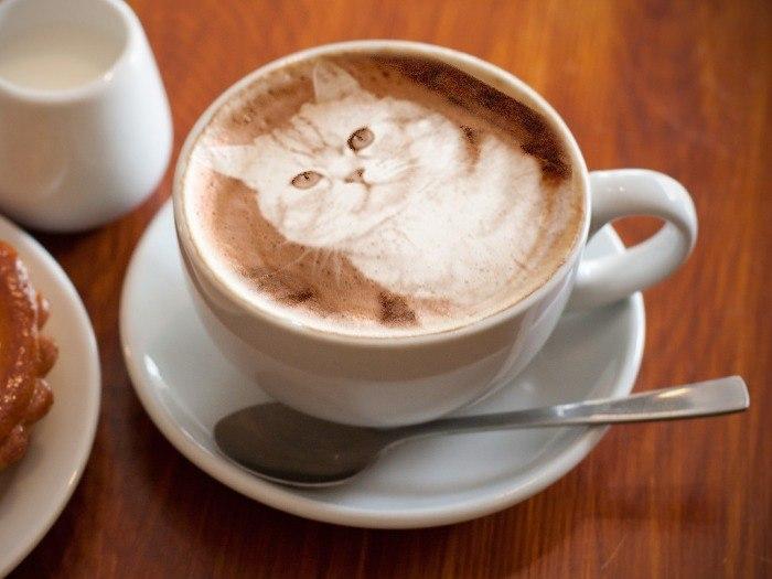Новым, открытки кофе со сливками