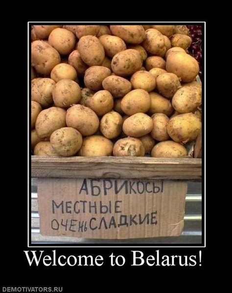 демотиваторы про картошку с мясом найдете все организации