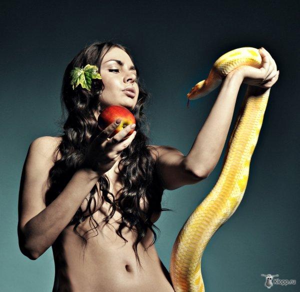 первый взгляд фотосессия в стиле евы и змея мудрое поздравление