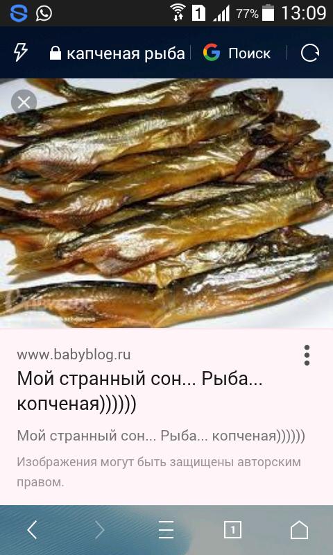 для во сне жарила рыбу политехнический