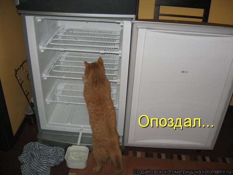 Делаем открытку из того что есть в холодильнике, надписью спасибо
