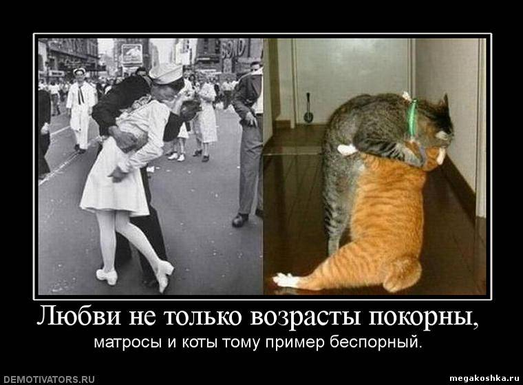 http://otvet.imgsmail.ru/download/20616354_515c2f52e03ab1822f778c83c9b2a6e4_800.jpg