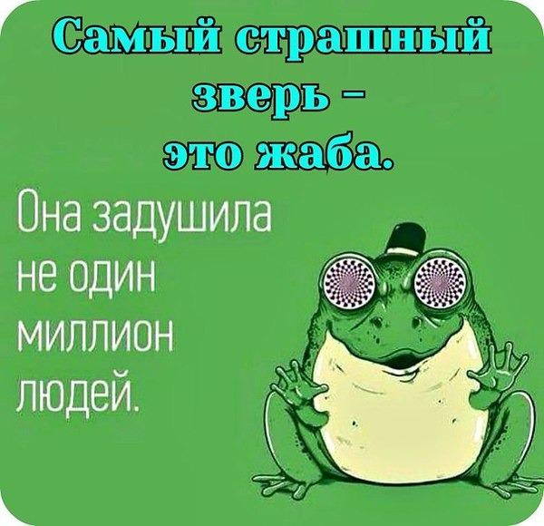 прикольные картинки жаба давит этой группы способны