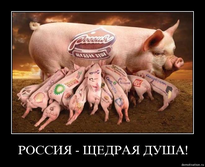 Картинках, россия щедрая душа картинки приколы