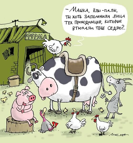 сегодняшний коровы картинки карикатуры месяц после