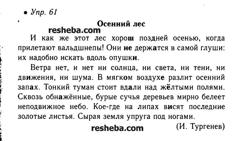 Ok Google Гдз По Русскому Языку 6 Класс Ладыженская