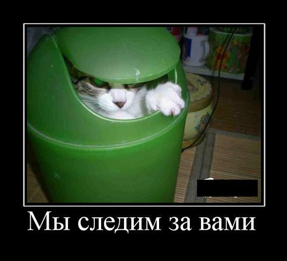 Не расслабляйтесь!