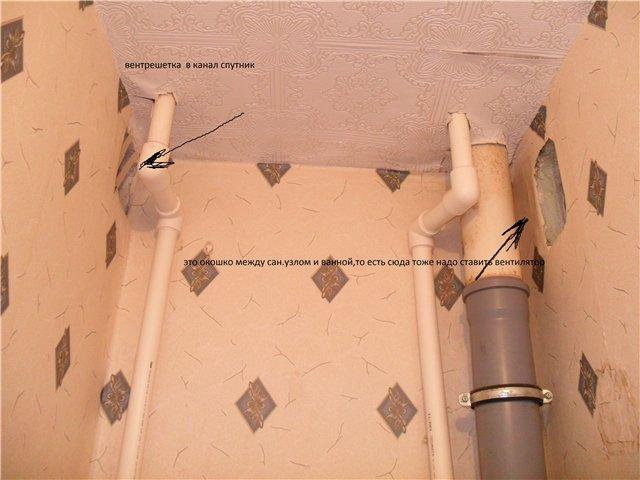 работы дохнут допускается ли приточная вентиляция в туалете женщина-Рак классический пример